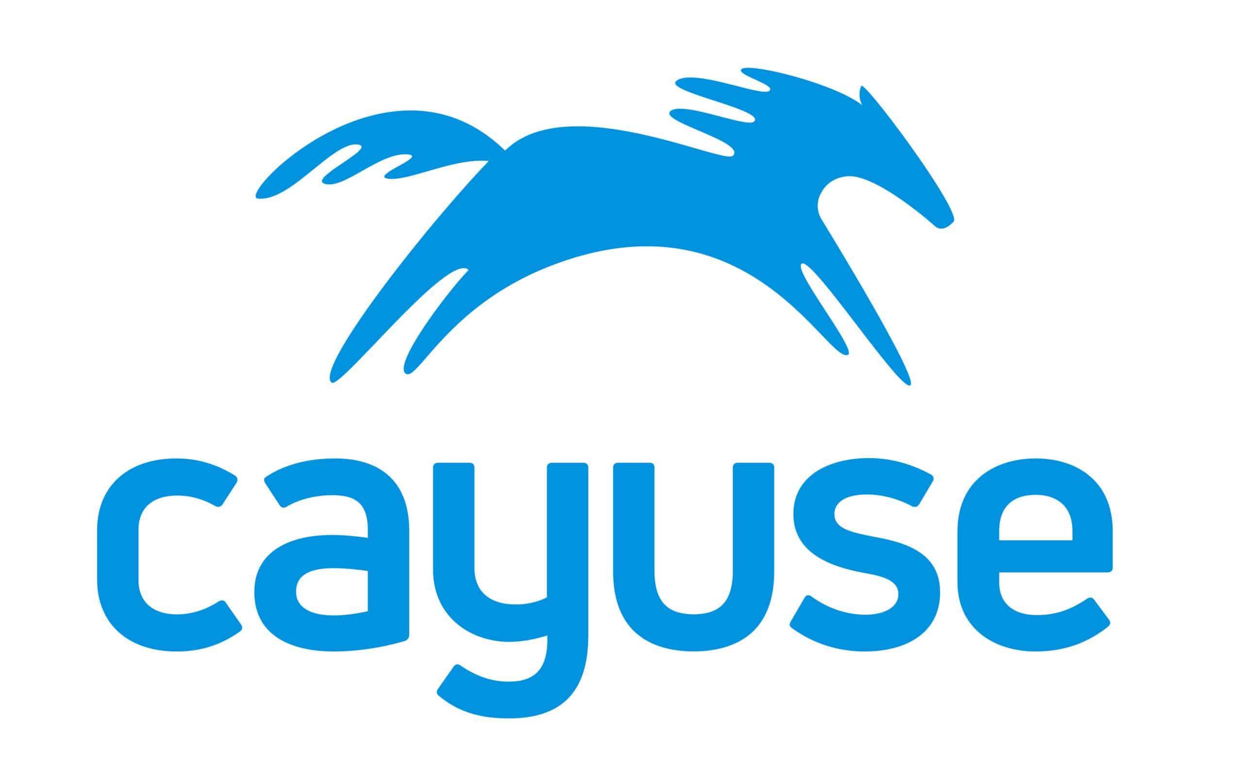 Cayuse